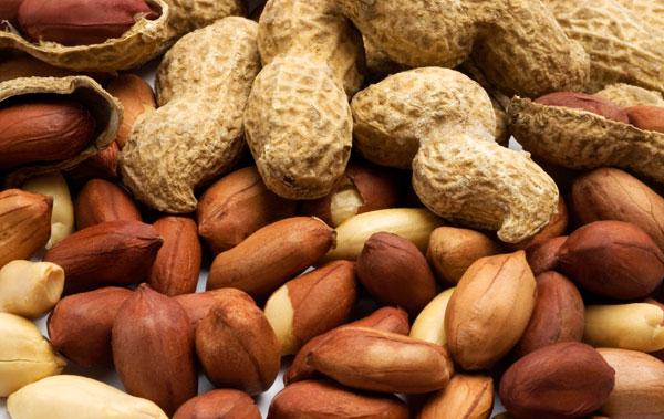 El maní, rico en antioxidantes y aliado de la salud cardiovascular