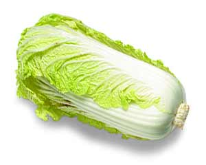 repollo chino chinese cabbage