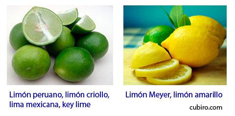 A la izquierda Citrus aurantifolia y a la derecha Citrus meyeri
