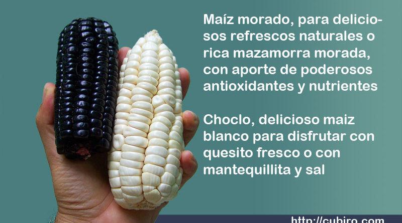 Maiz morado y choclo