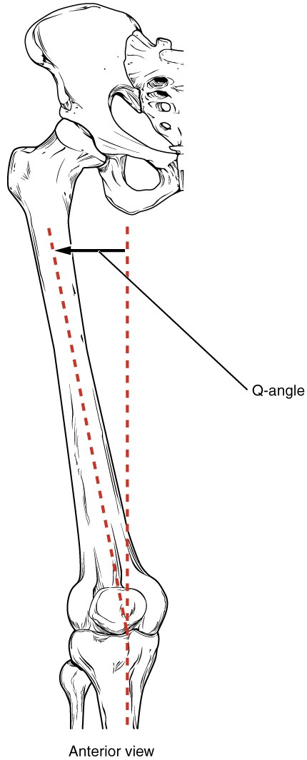 Femur_Q_Angle