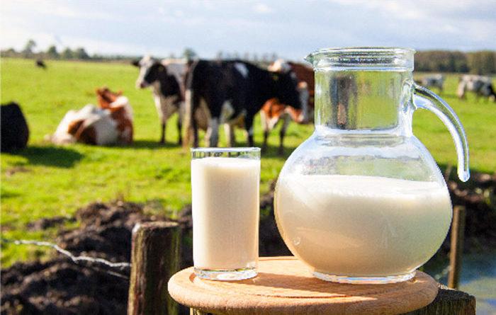 Dónde comprar leche fresca en Lima