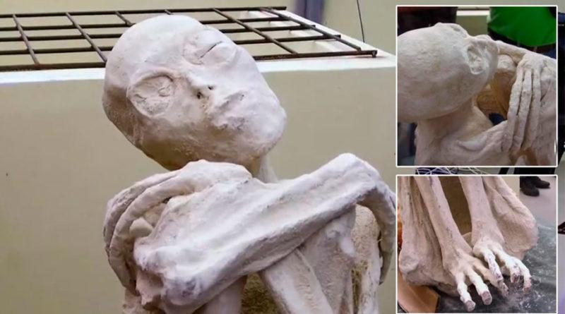 Las momias tridáctilas de Nazca