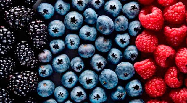 las bayas o berrries son parte de los mejores alimentos para el cerebro