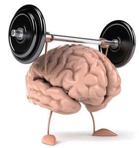 El cerebro no es un músculo, pero se puede tratar como si lo fuera